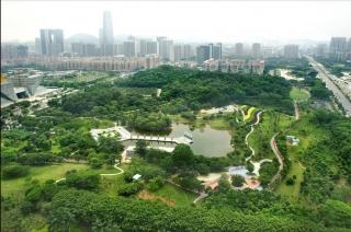 元美公园千赢国际登首页绿化养护