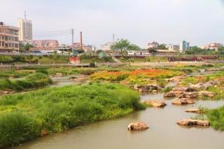 灵山县钦江大桥至接龙桥段一江两岸景观提升工程项目