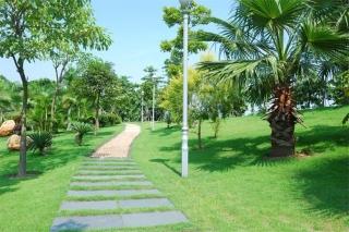 贝博app手机版市虎门港西大坦港区道路及中心服务区绿化工程