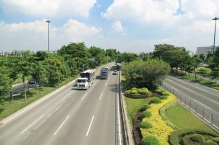 东莞市五环路西环绿化工程