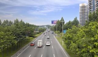 东莞环城路绿化养护