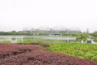 生态园行政岛环境完善工程